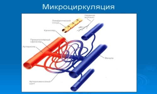 Назначается медикамент для восстановления нарушенной микроциркуляции