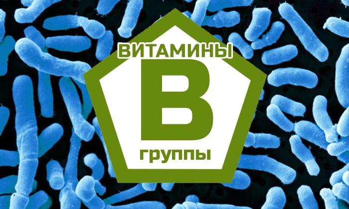 Бифидобактерии усиливают эффект витаминов группы В при одновременном приеме