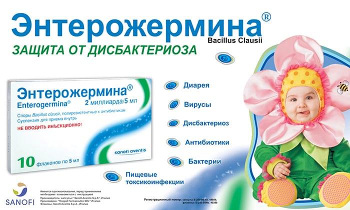 Аналогом Бифидумбактерина может выступать препарат Энтерожермина