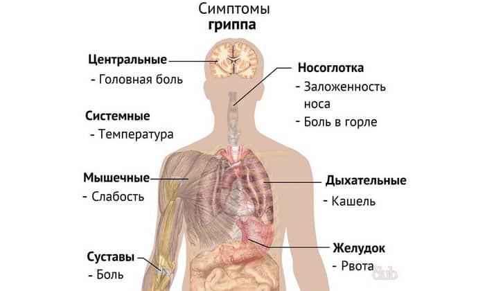 В связи с этим немедленно обращайтесь к врачу, если вы заметили симптомы простуды или гриппа, так как это может быть признаком того, что возникло состояние агранулоцитоза