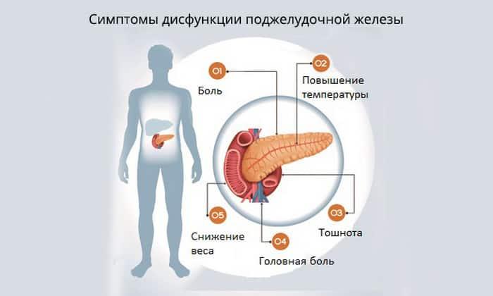 Ферменты назначают при недостаточной внешнесекреторной функции поджелудочной железы, патологиях печени и желчевыводящей системы
