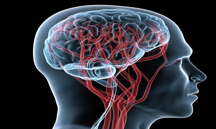 Препарат улучшает кровоснабжение головного мозга