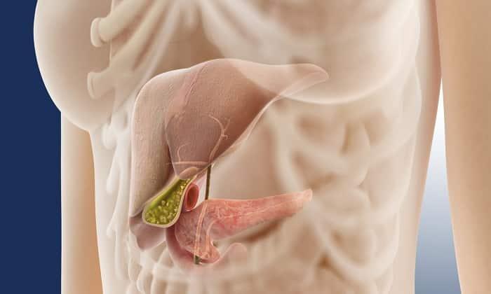 Панкраген необходим при терапии хронического панкреатита
