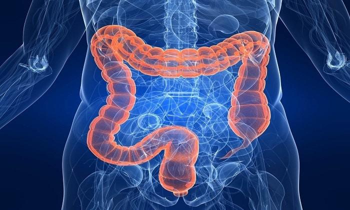 Декстран 40 полезен при паралитической непроходимости кишечника