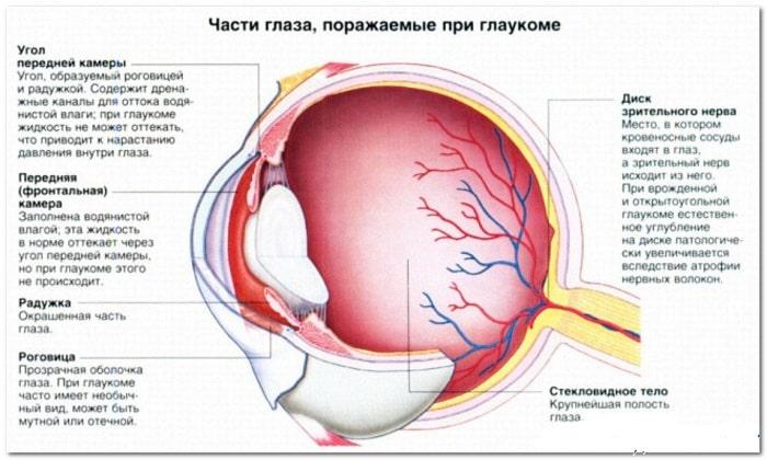 Лекарство используется при таких состояниях, как некоторые формы глаукомы различных стадий