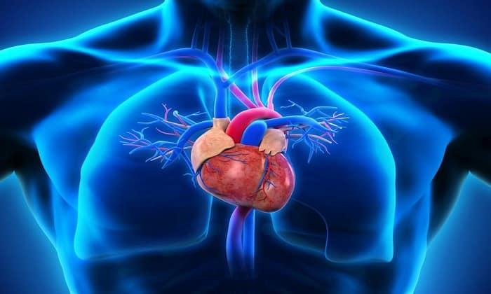 Папаверин буфус используется для комплексного лечения стенокардии