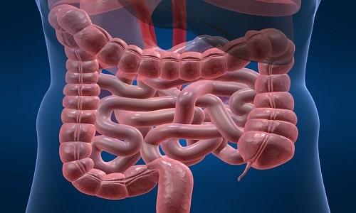 Панзинорм прописывается только для улучшения процесса пищеварения в кишечнике