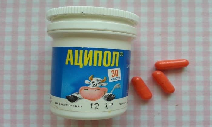 Часто Аципол прописывается при нарушениях функций кишечника