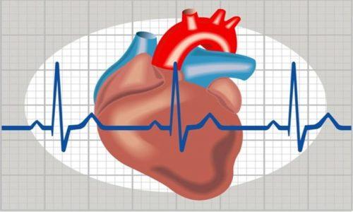 При постинфарктной реабилитации и стенокардии прописываются дозы по 2-5 г в день