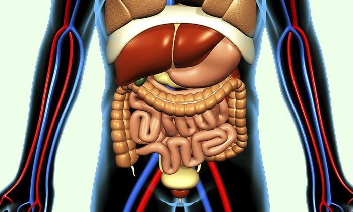 Препарат может справиться с нарушением целостности слизистой оболочки органов ЖКТ