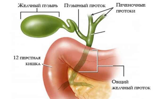 Препарат назначают для устранения рвоты и тошноты у пациентов с дискинезией желчевыводящих путей