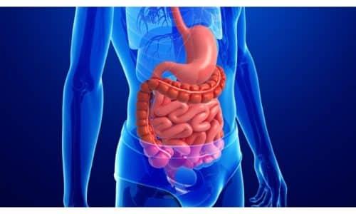 Сбои в работе органов ЖКТ могут появиться у лиц с кишечной резекцией