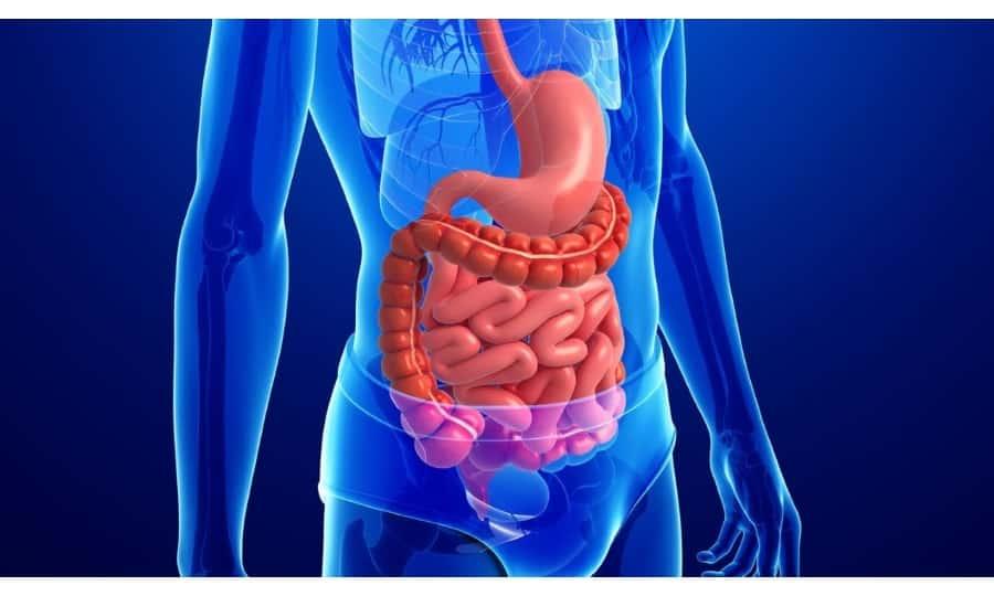 Спазмолитический препарат Тримедат стимулирует сокращение кишечника.