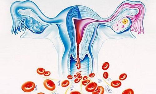 Папаверин применяют при менструациях