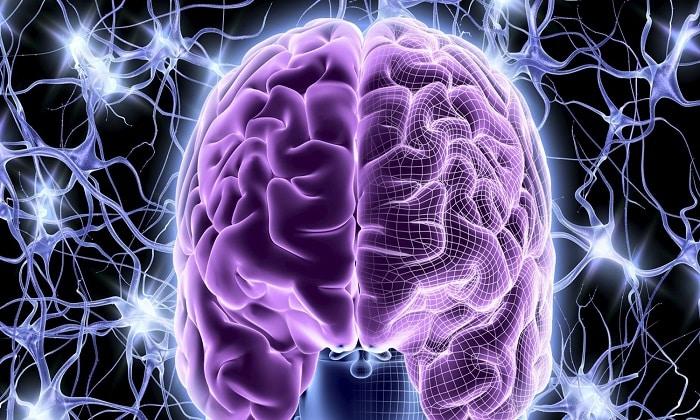 Добавка стимулирует мозговую деятельность