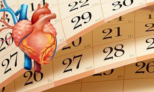 При ишемической болезни сердца прием Мексидола должен длиться не менее 1,5-2 месяцев