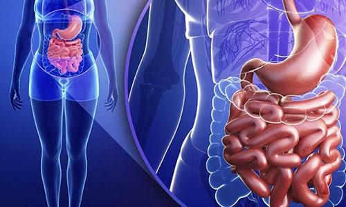 Фармакокинетика препарата состоит в том, что энзимы, присутствующие в лекарстве, высвобождаются только в тонкой кишке
