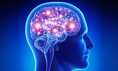 Мексидол улучшает обмен веществ в тканях мозга