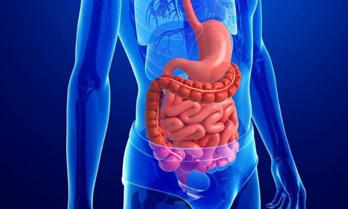 Препарат устраняет спазм, не оказывает влияния на нормальную перистальтику, силу и частоту сокращений желудка и кишечника