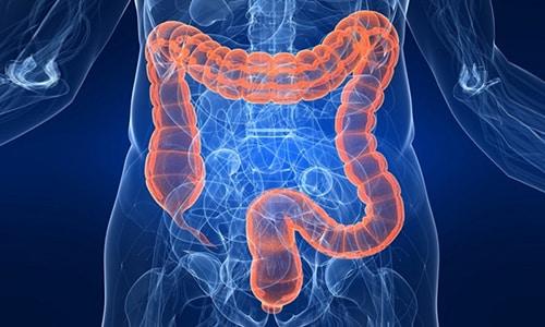Выводится лекарство кишечником