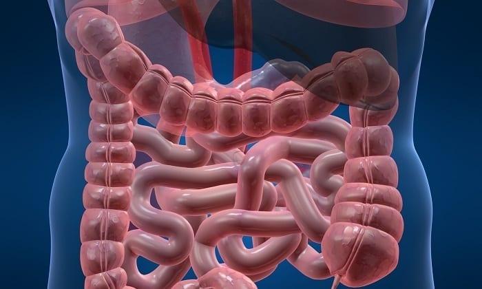Препарат помогает в устранении синдрома раздраженного кишечника