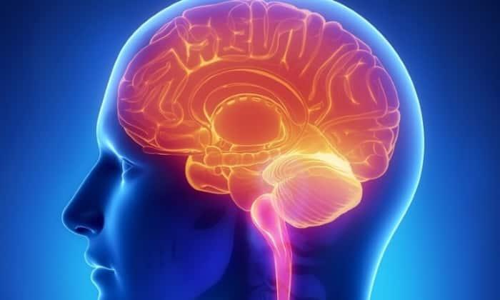 Нежелательно применять препарат при нарушении функции головного мозга