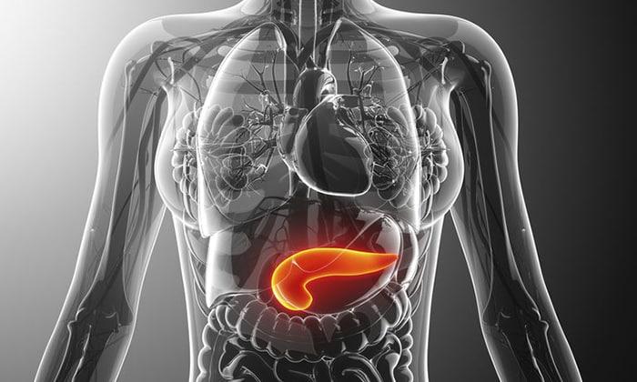 Л-карнитин 500 применяется при панкреатите хронического типа