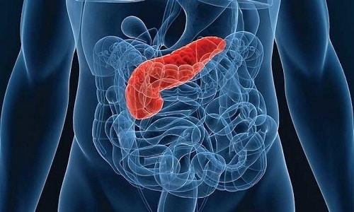 При недостаточности функции поджелудочной железы препарат принимают в течение нескольких месяцев/лет