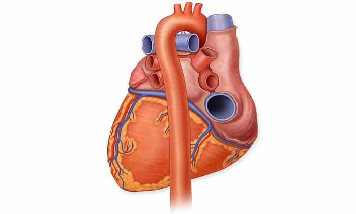 Аминометилбензойную кислоту используют при проведении операций на открытом сердце
