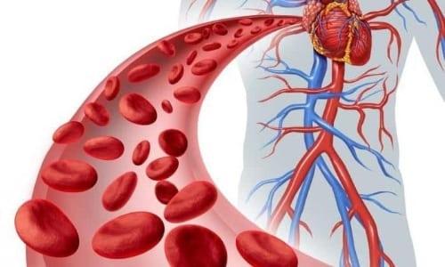 В составе крови максимальная концентрация препарата будет достигнута через 3 часа, но действие сохранится на 9 часов